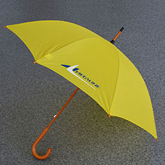 Зонт фирменный